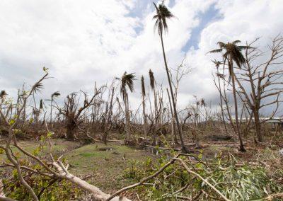 El huracán María desde la diáspora
